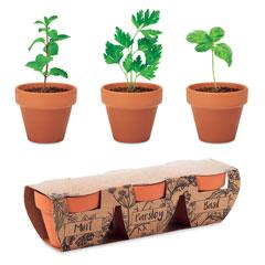 Terracotta set med 3 örtskålar