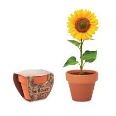 Terracotta skål 'sunflower'